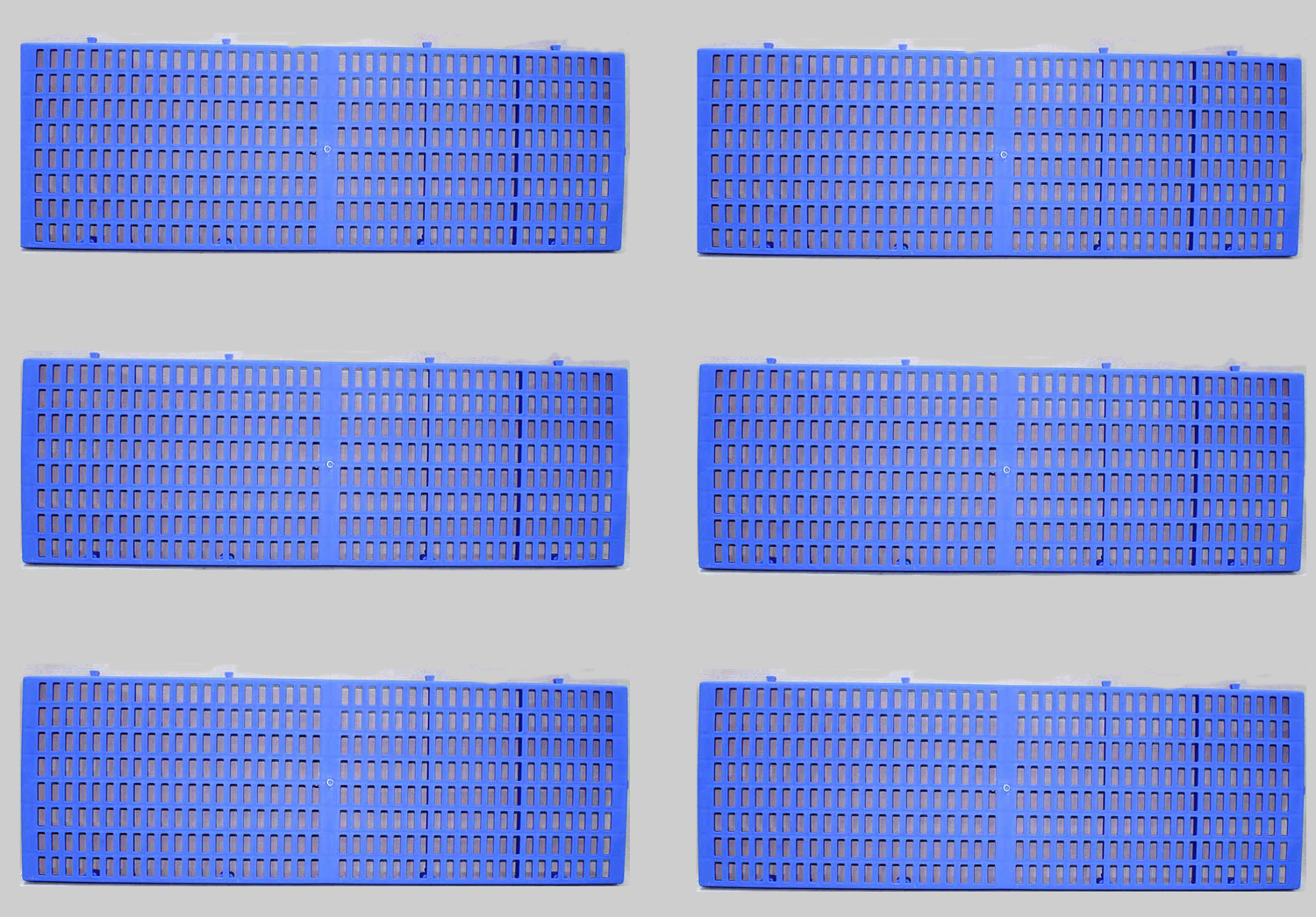 6pcs Plastic Kennel Board 3 feet x 1 Feet Blue
